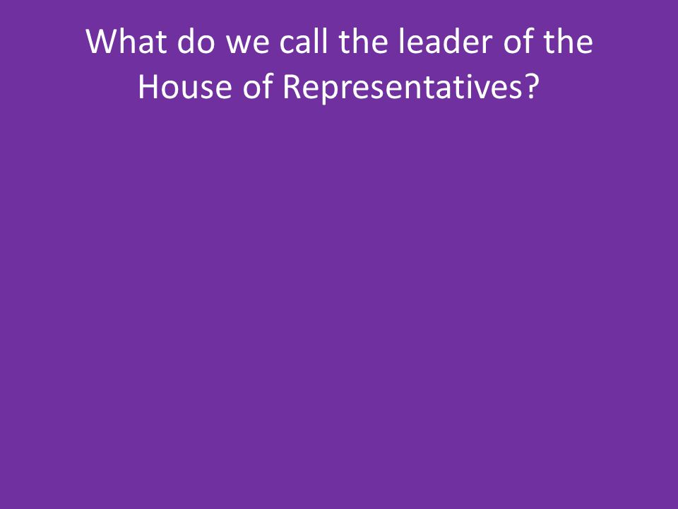 What do we call the leader of the House of Representatives
