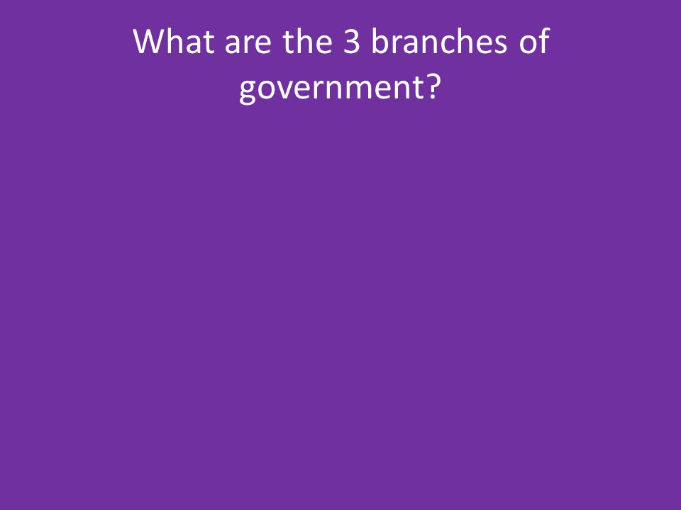 What are the 3 branches of government