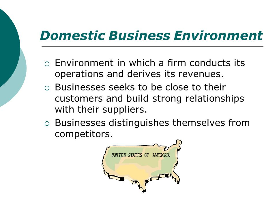 Domestic Business Environment