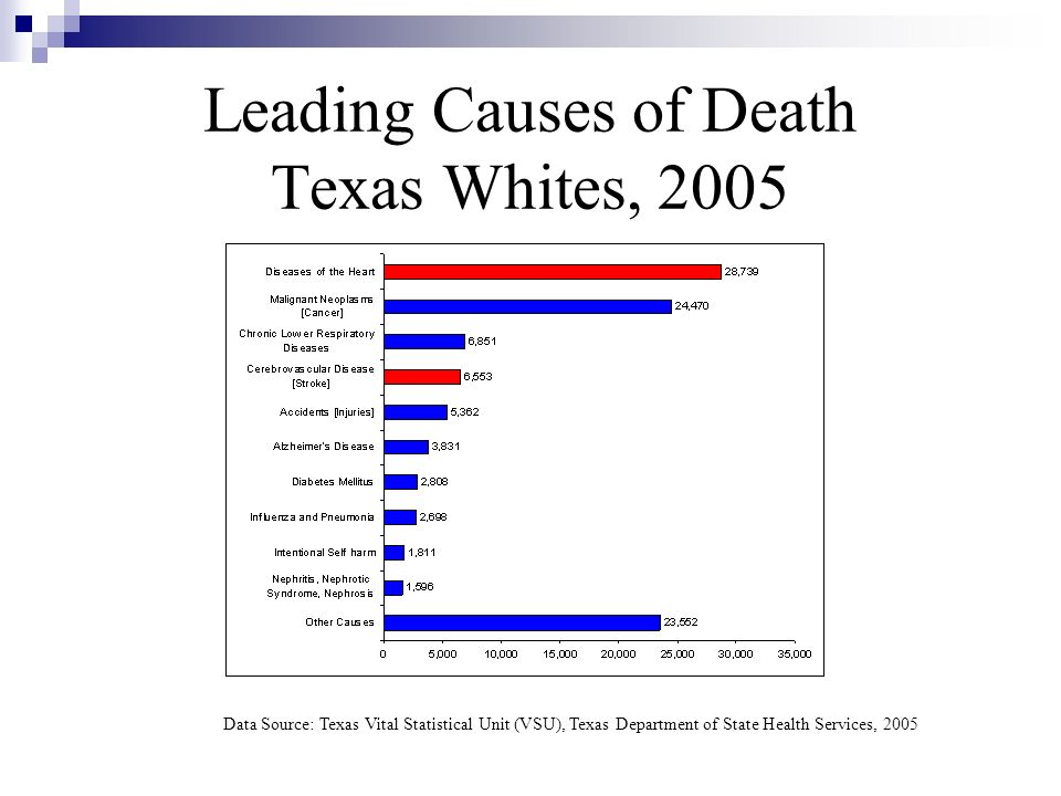 Leading Causes of Death Texas Whites, 2005