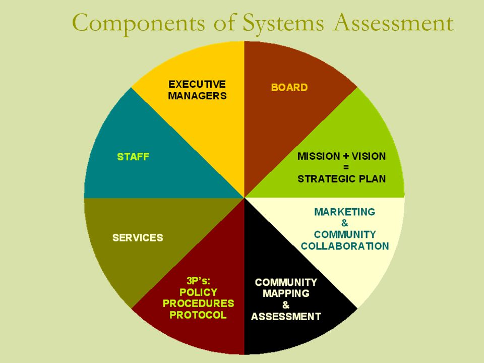 Components of Systems Assessment