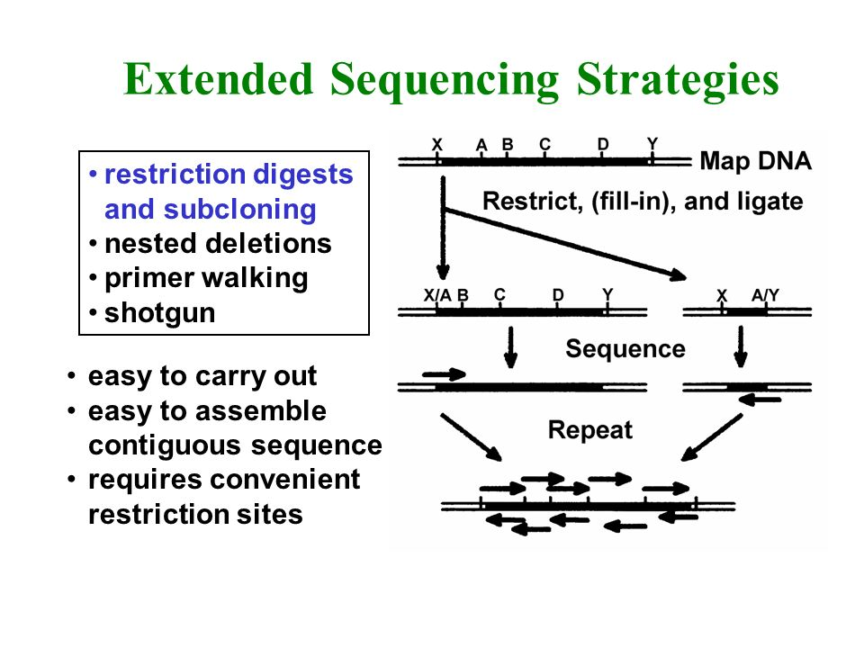 Extended Sequencing Strategies