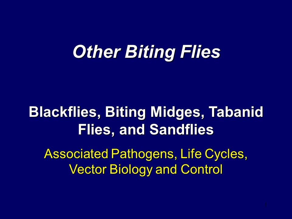 Other Biting Flies Blackflies, Biting Midges, Tabanid Flies, and Sandflies.