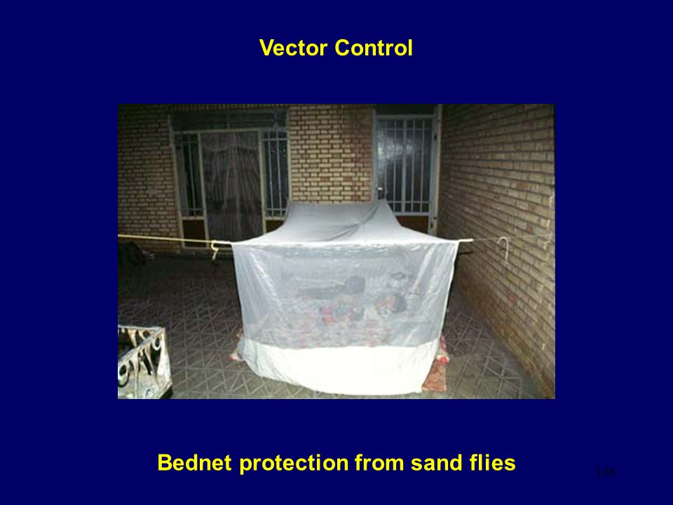 Bednet protection from sand flies