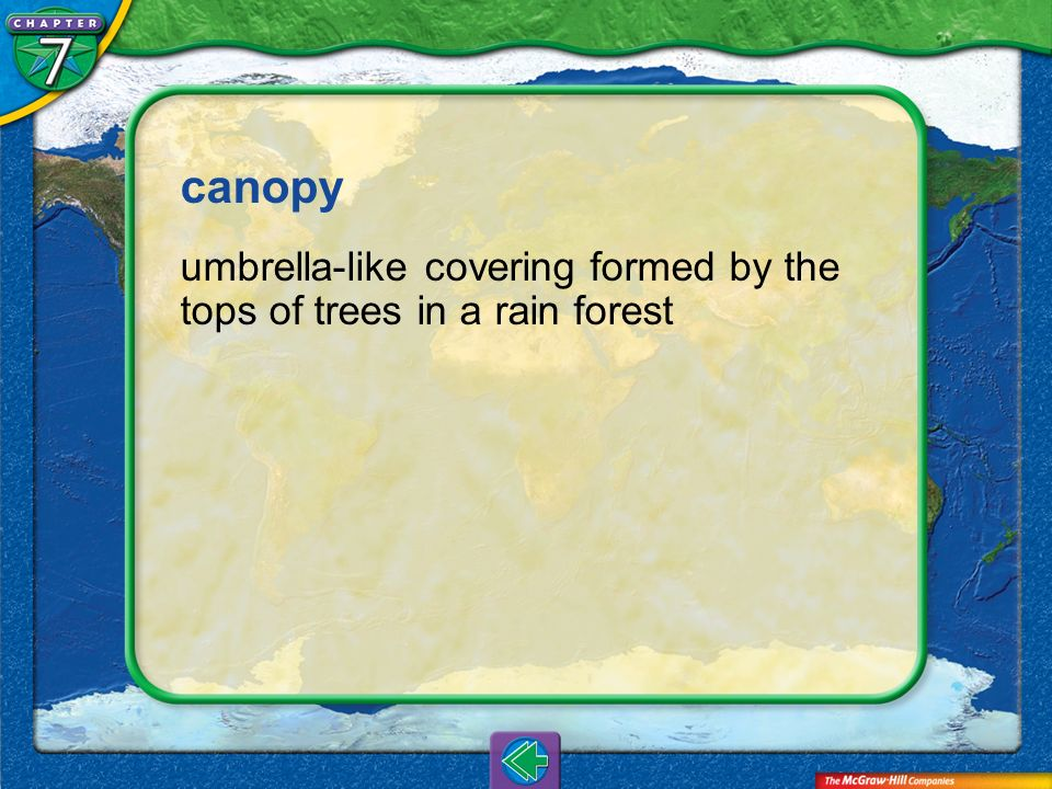 canopy umbrella-like covering formed by the tops of trees in a rain forest Vocab14
