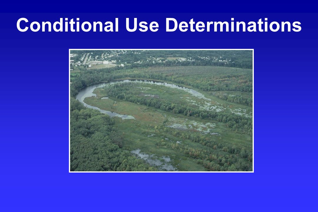 Conditional Use Determinations