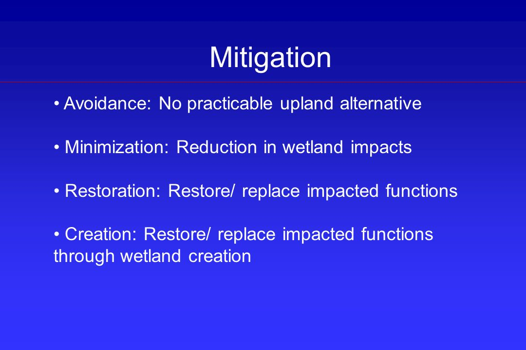 Mitigation Avoidance: No practicable upland alternative