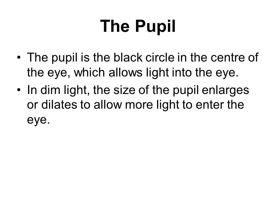 The Pupil The pupil is the black circle in the centre of the eye, which allows light into the eye.