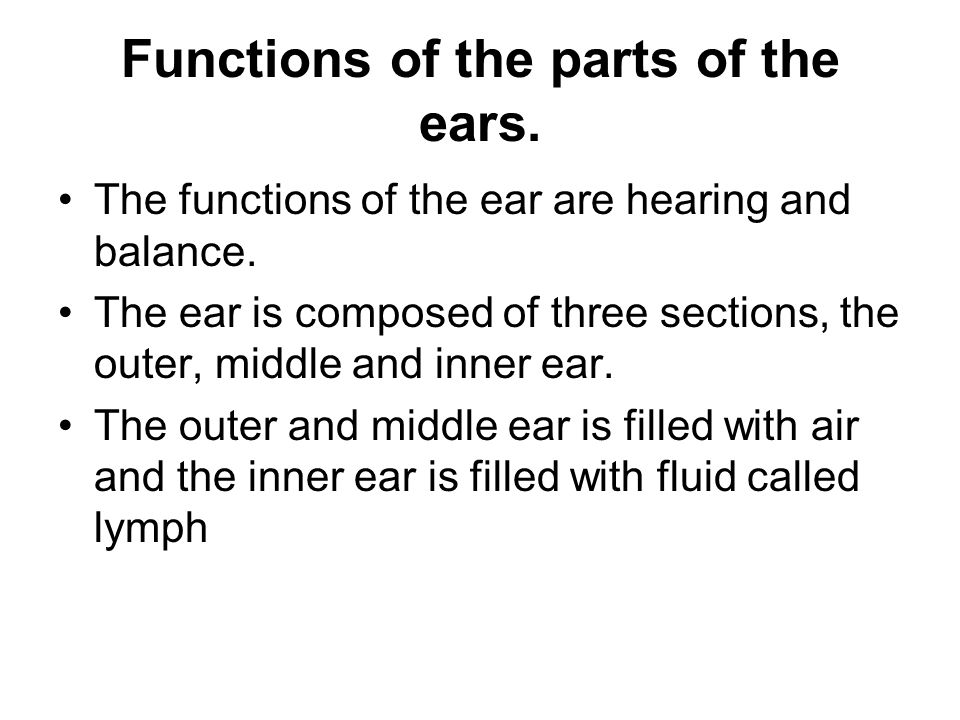 Functions of the parts of the ears.
