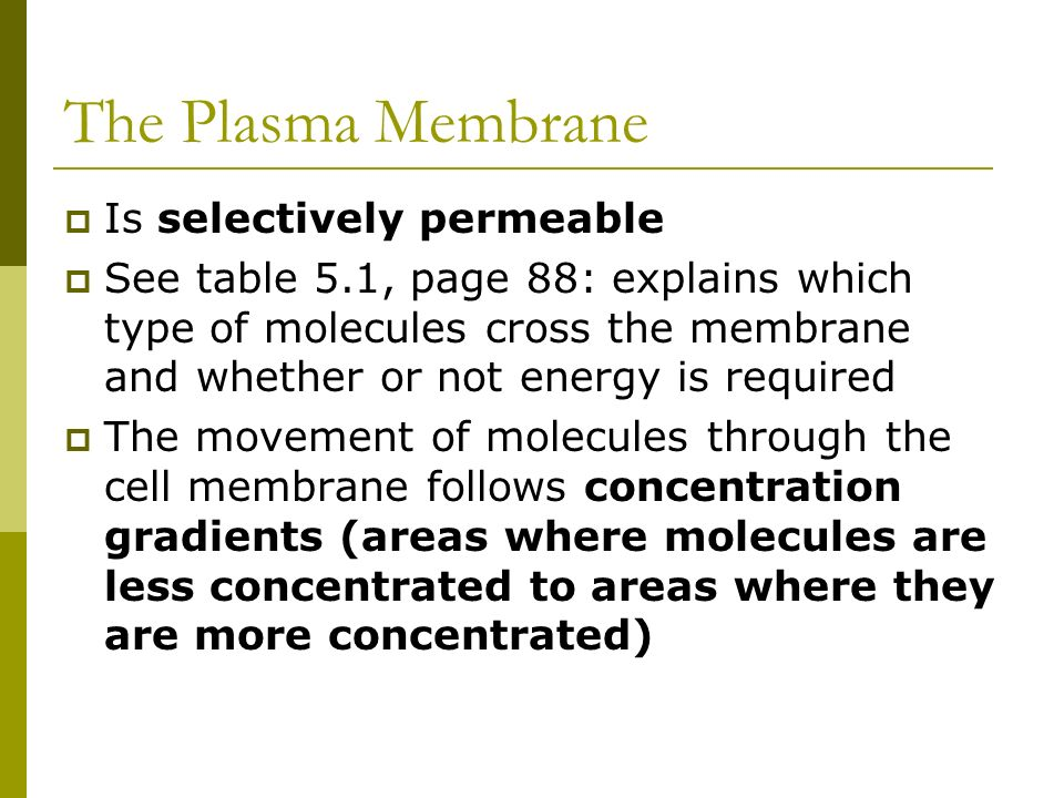 The Plasma Membrane Is selectively permeable