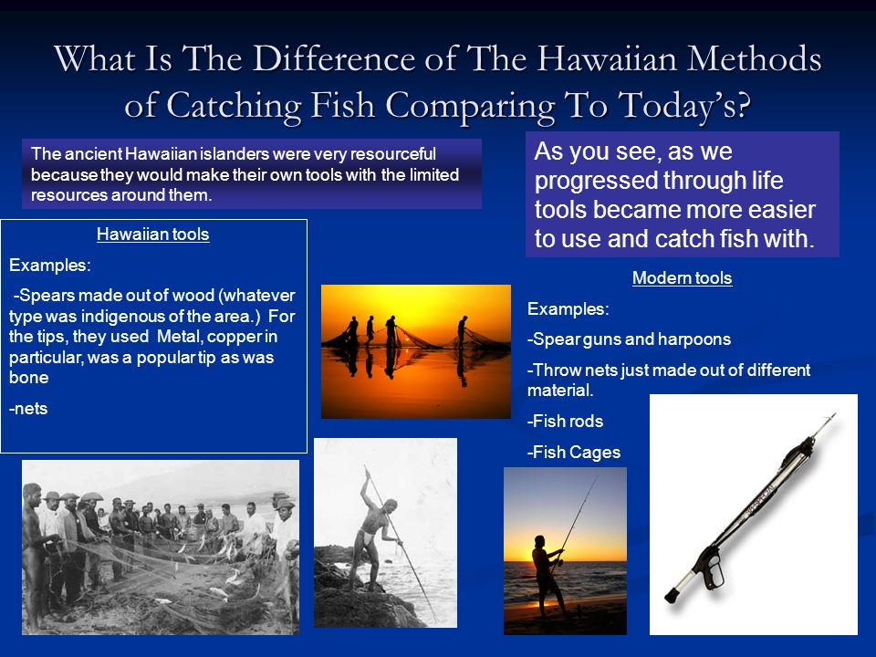 What Is The Difference of The Hawaiian Methods of Catching Fish Comparing To Today's