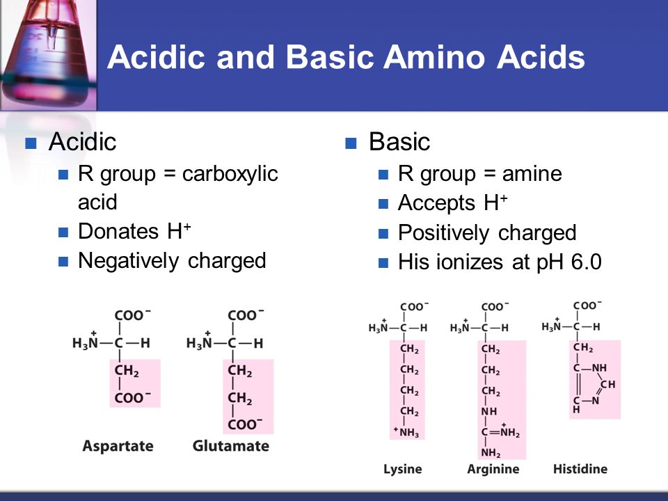 Chapter 3 amino acids peptides and proteins ppt video online acidic and basic amino acids altavistaventures Images