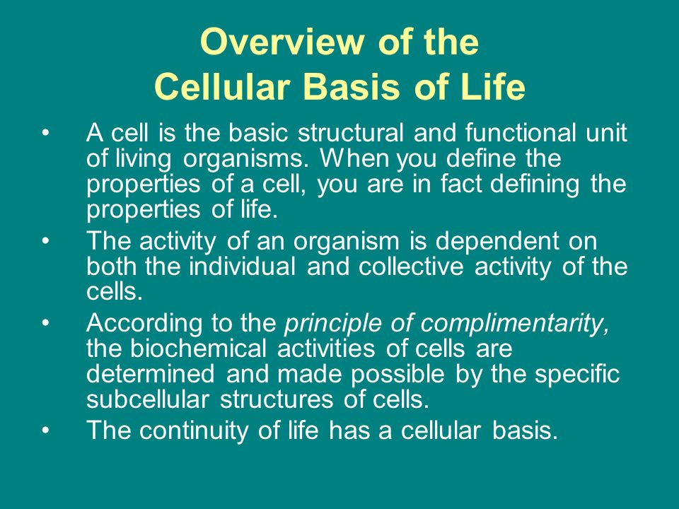 Anatomy of Cells. - ppt video online download