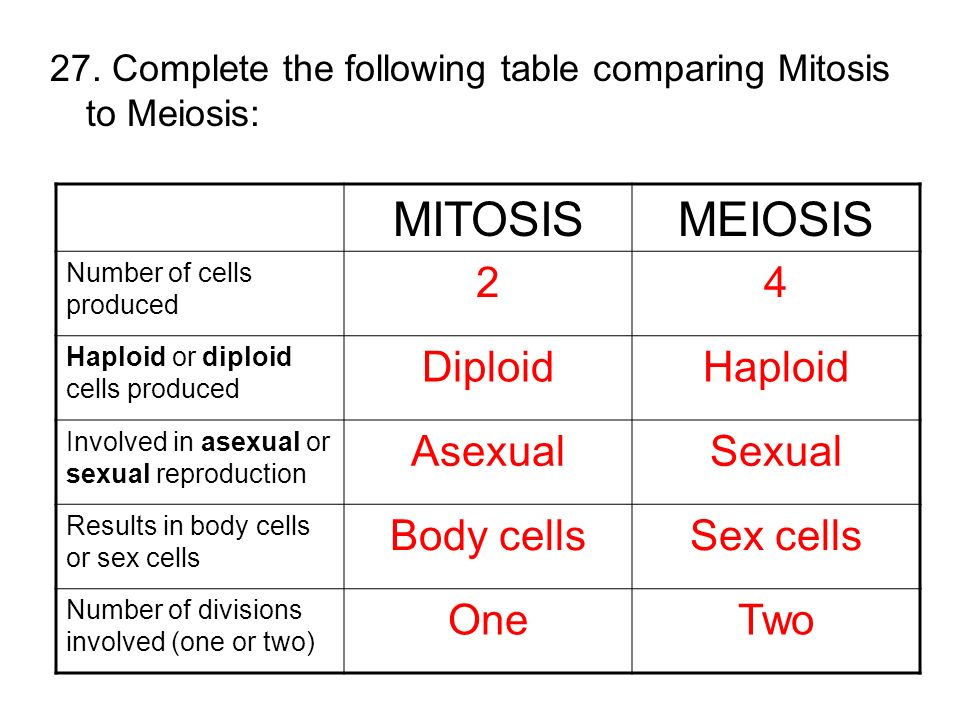 Asexual and sexual reproduction similarities and differences between mitosis
