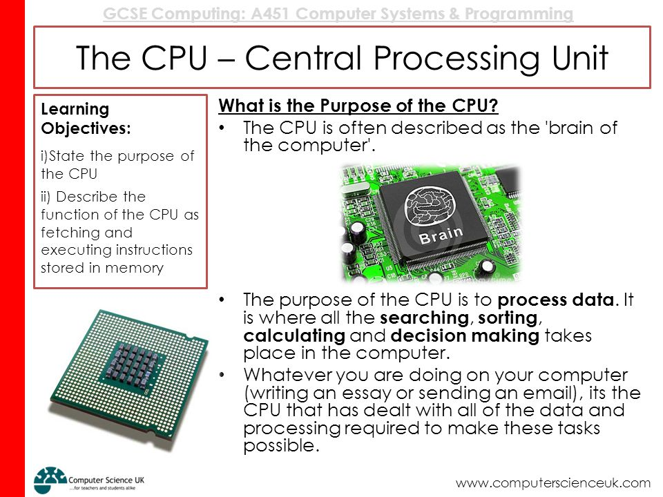 a summary of different memory sizes of central processing unit in computer technology Processor, also called the central processing unit (cpu), interprets and carries out the basic instructions that operate a computer in computing, bus is a subsystem that use to transfer data between computers or between components in the computer such as memory, sound system and.