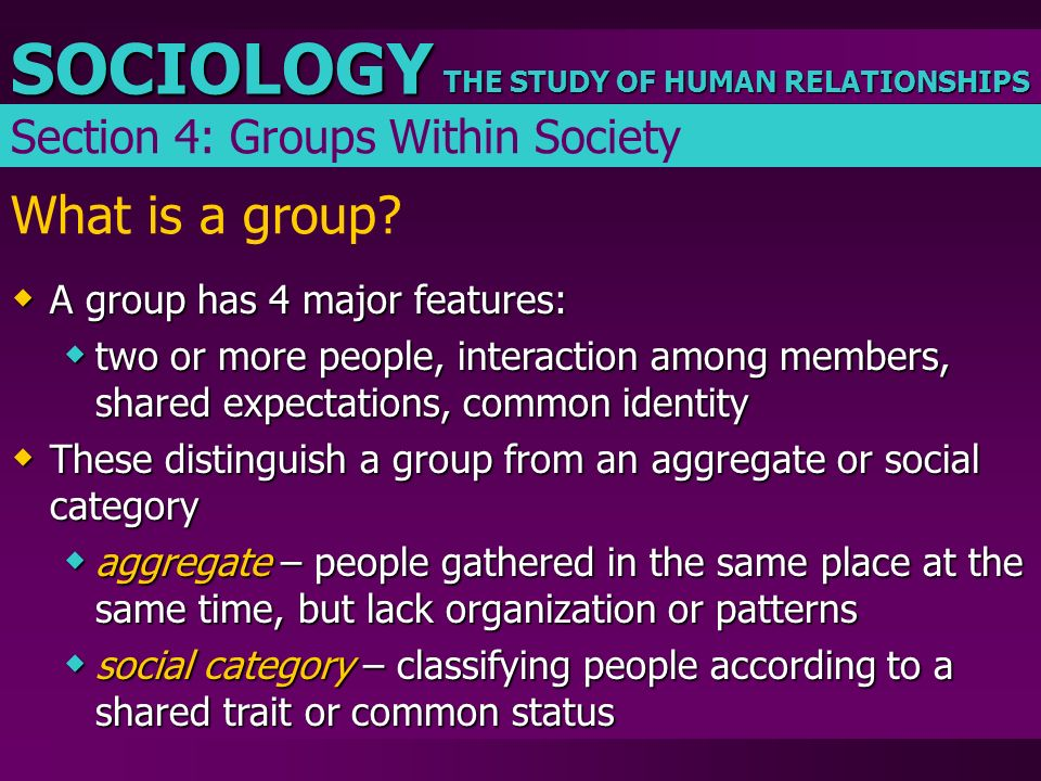 What is a group Section 4: Groups Within Society