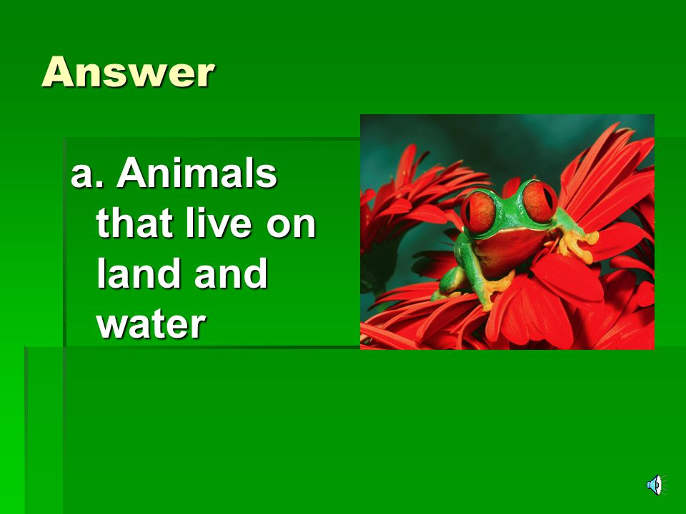 Answer a. Animals that live on land and water