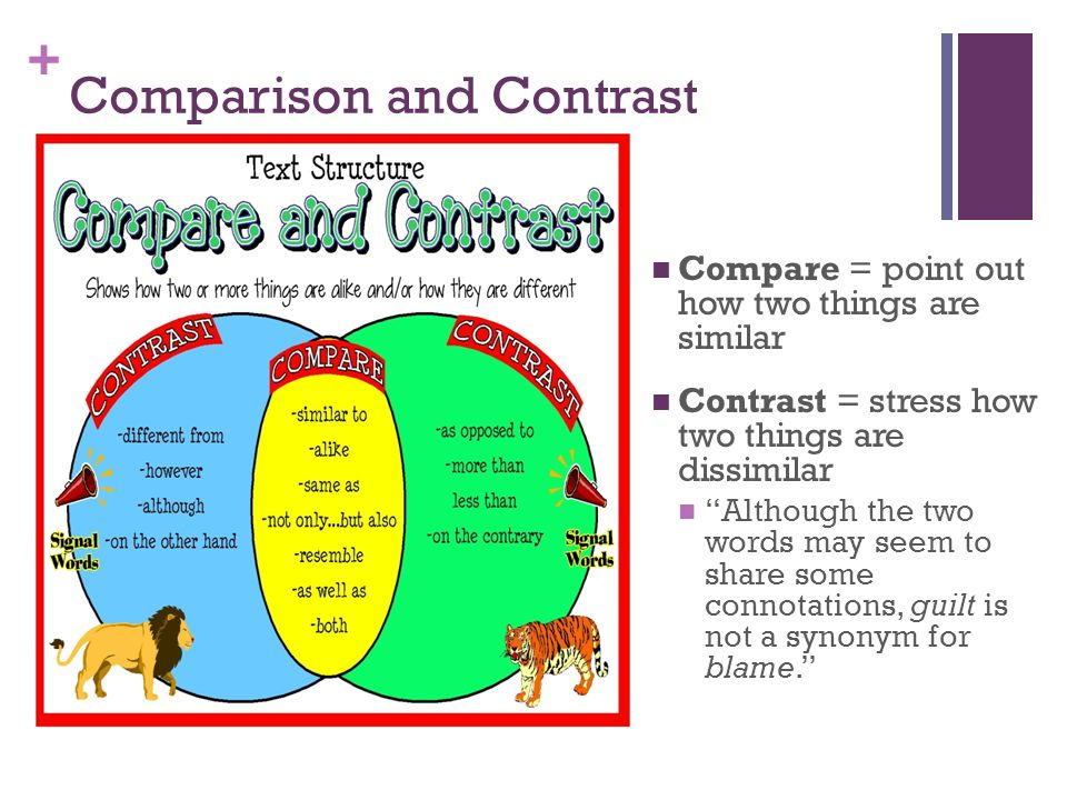contrast pattern words