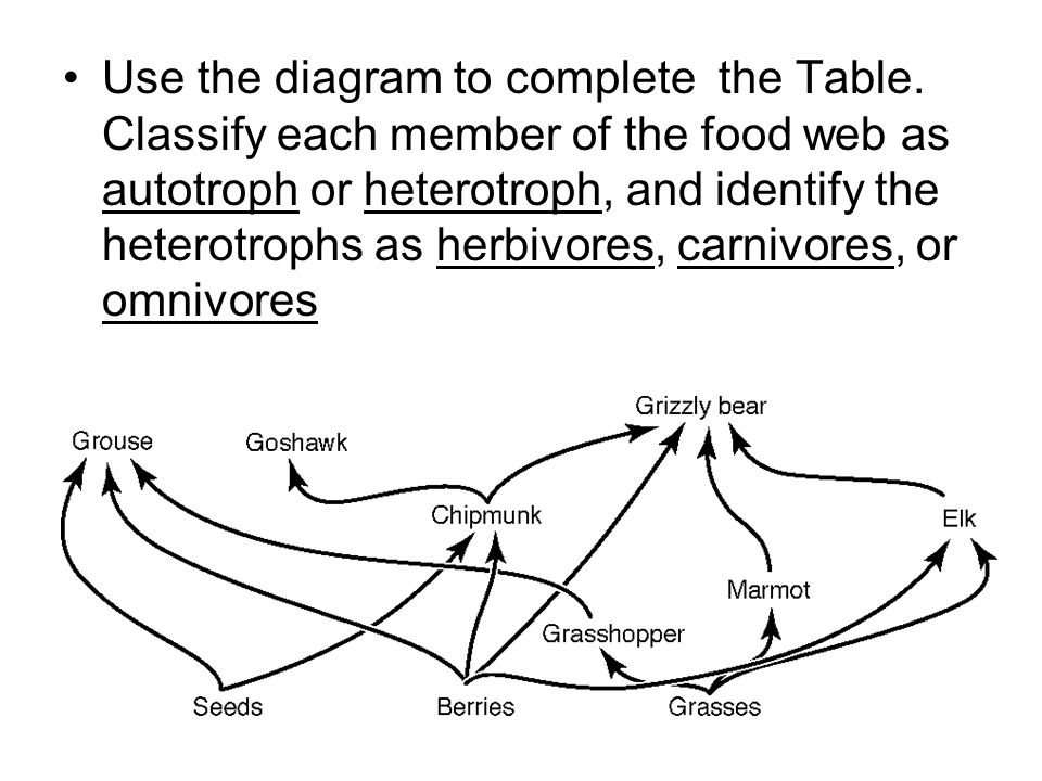 Use the diagram to complete the Table