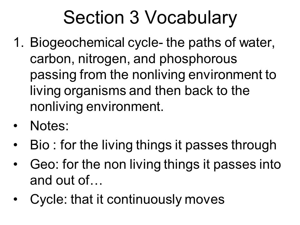 Section 3 Vocabulary