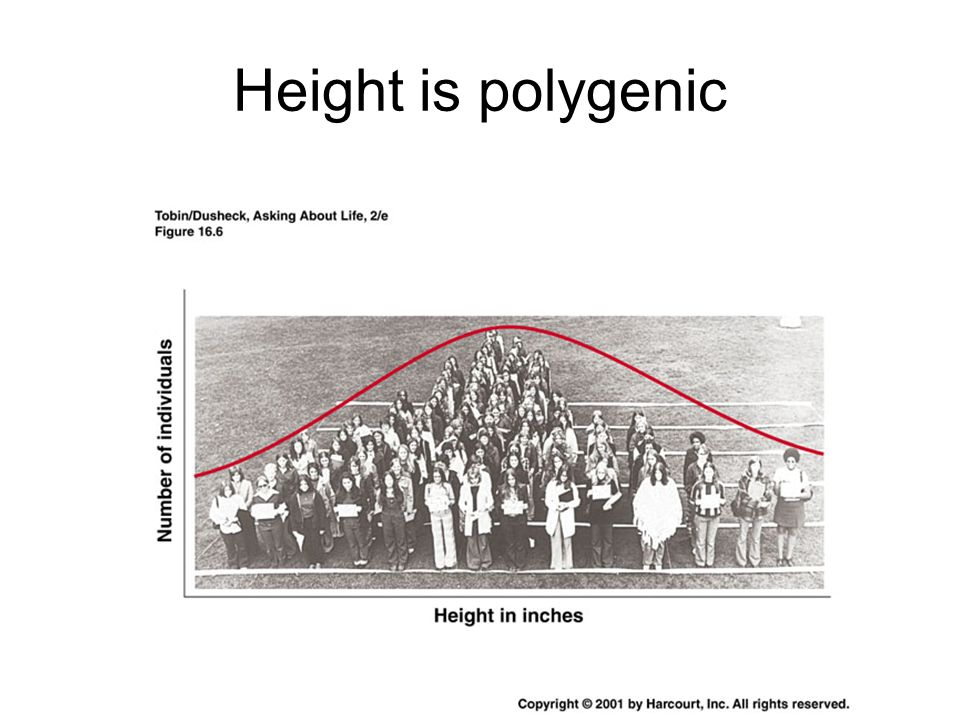 Height is polygenic