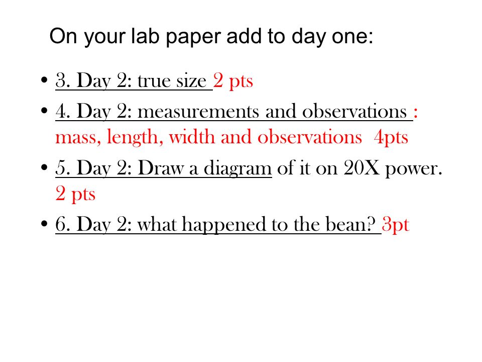 On your lab paper add to day one: