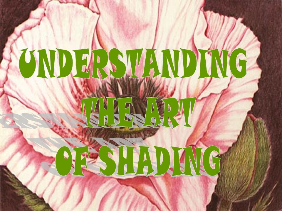 UNDERSTANDING THE ART OF SHADING