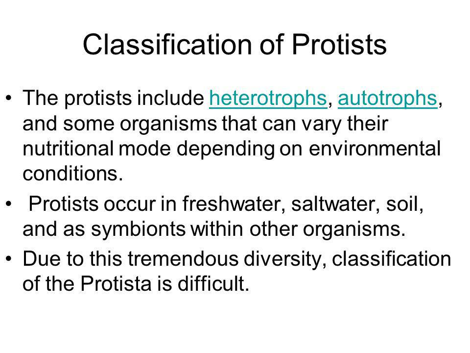 Classification of Protists