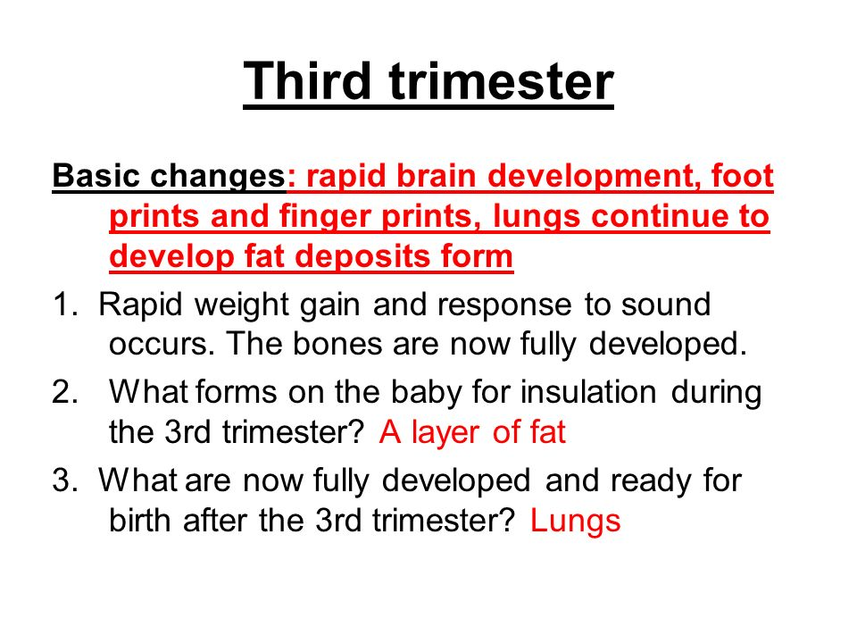 Third trimester Basic changes: rapid brain development, foot prints and finger prints, lungs continue to develop fat deposits form.