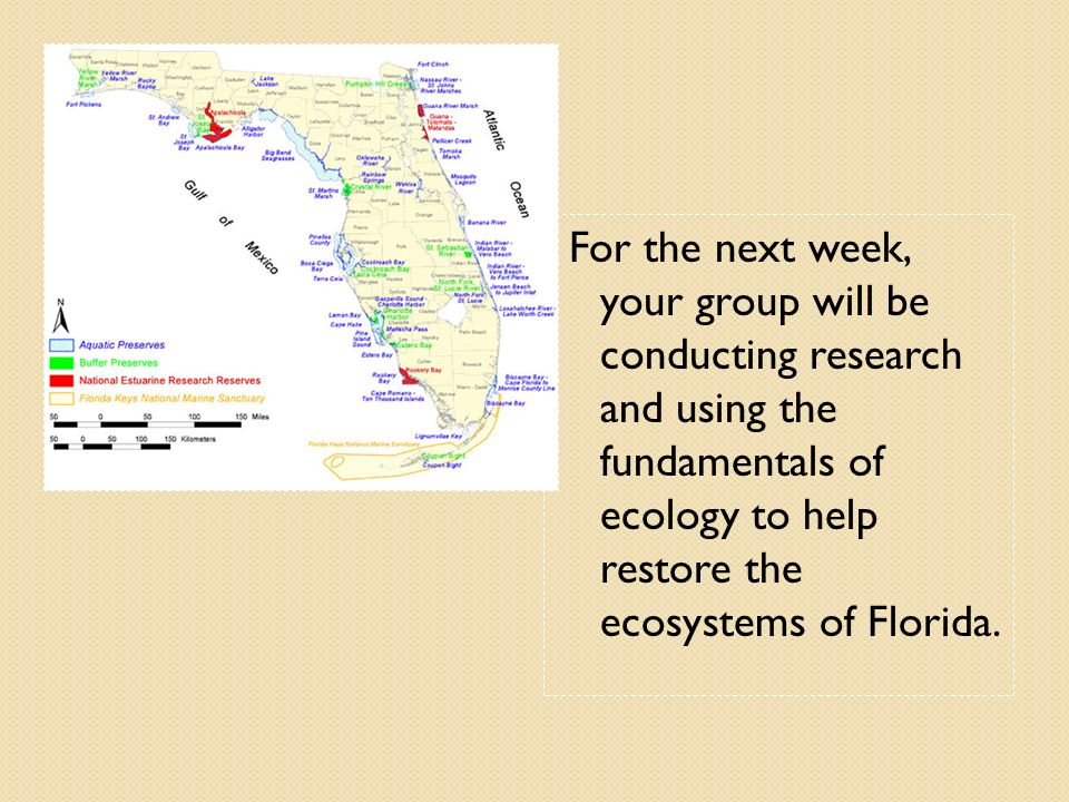 For the next week, your group will be conducting research and using the fundamentals of ecology to help restore the ecosystems of Florida.