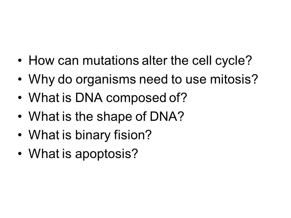 How can mutations alter the cell cycle