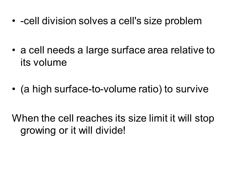 -cell division solves a cell s size problem
