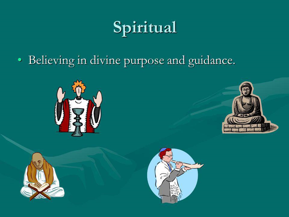 Spiritual Believing in divine purpose and guidance.