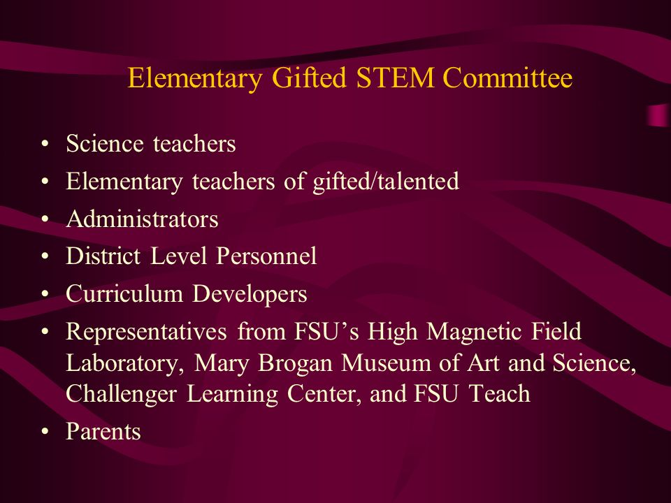 Elementary Gifted STEM Committee