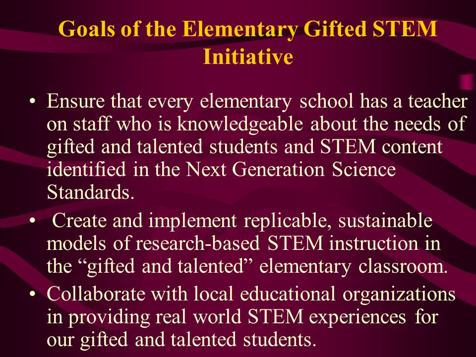 Goals of the Elementary Gifted STEM Initiative