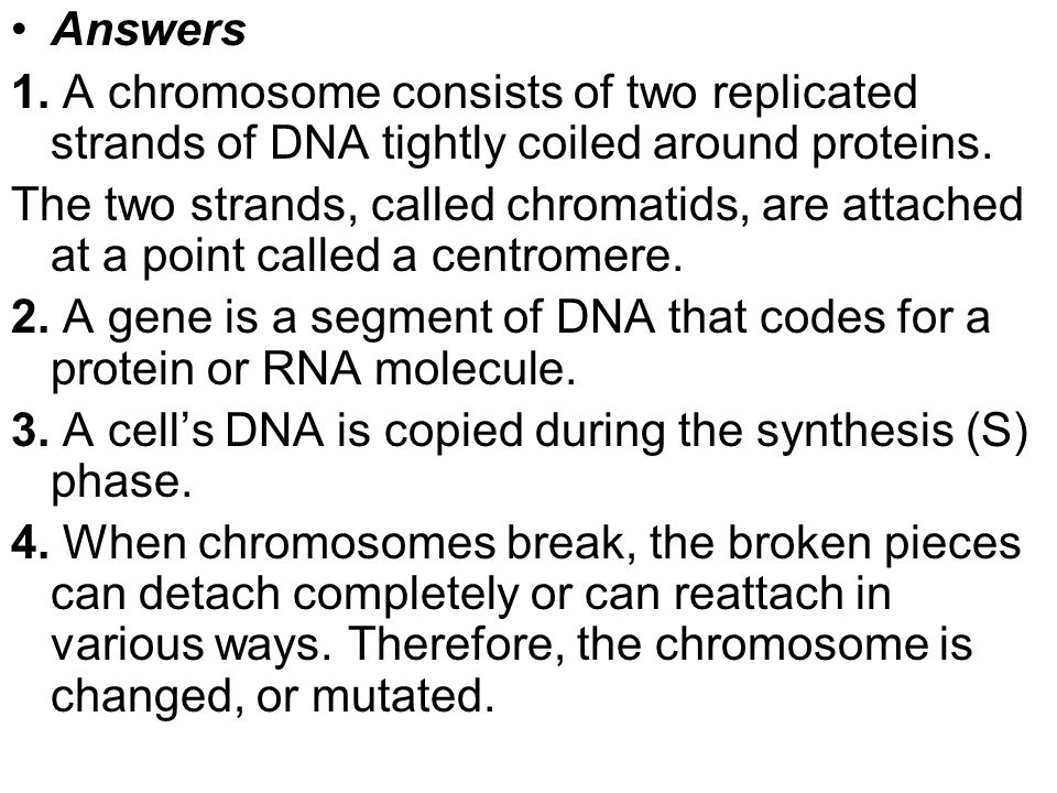 Answers 1. A chromosome consists of two replicated strands of DNA tightly coiled around proteins.
