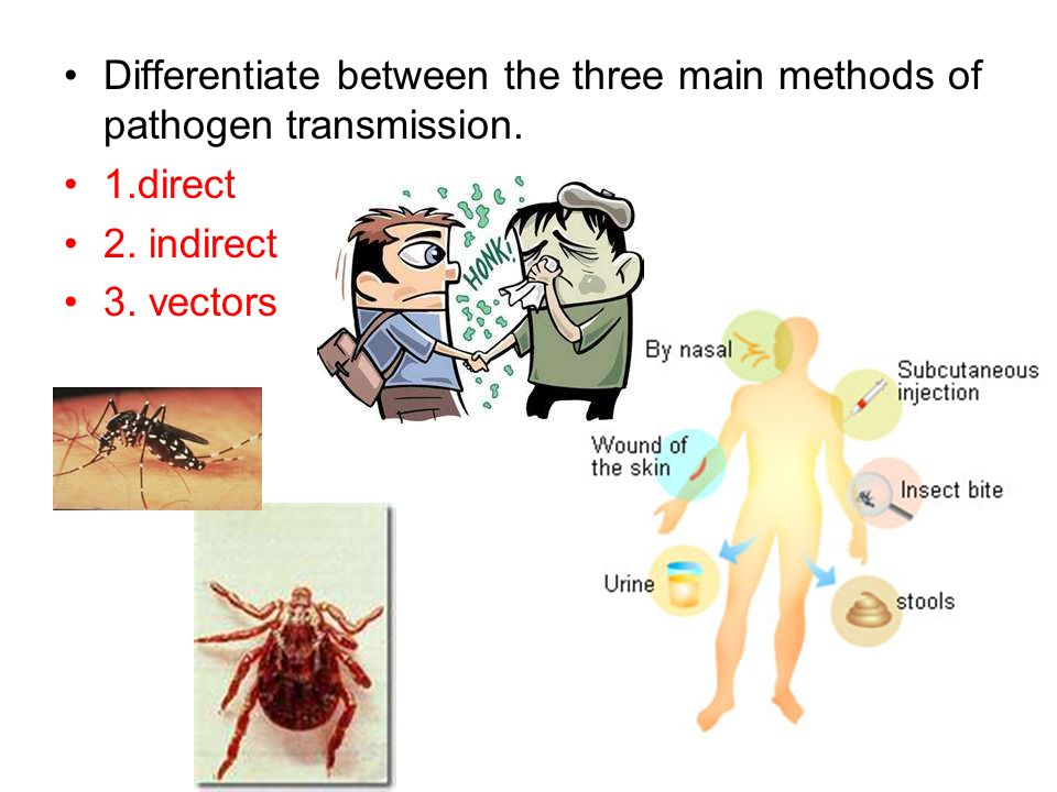 Differentiate between the three main methods of pathogen transmission.