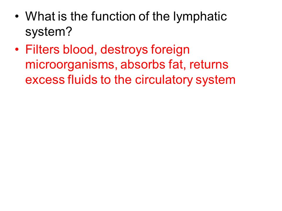 What is the function of the lymphatic system