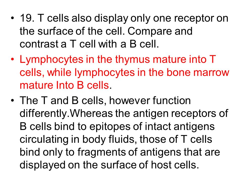 19. T cells also display only one receptor on the surface of the cell