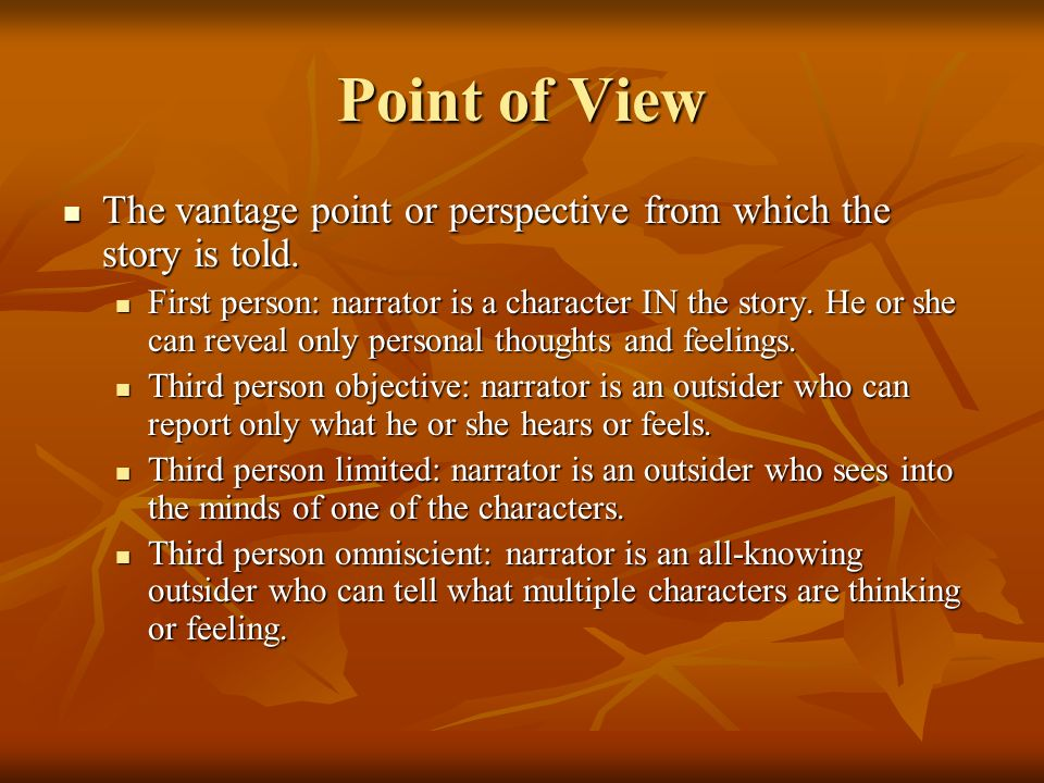 Point of View The vantage point or perspective from which the story is told.