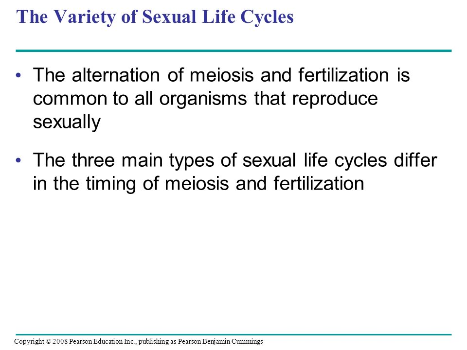 The Variety of Sexual Life Cycles