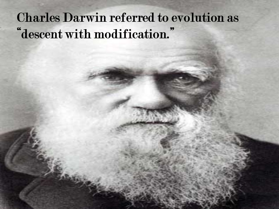 Charles Darwin referred to evolution as descent with modification.