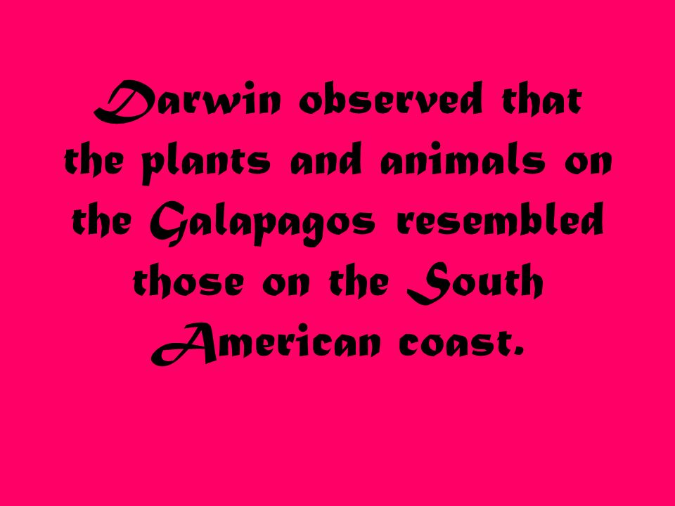 Darwin observed that the plants and animals on the Galapagos resembled those on the South American coast.