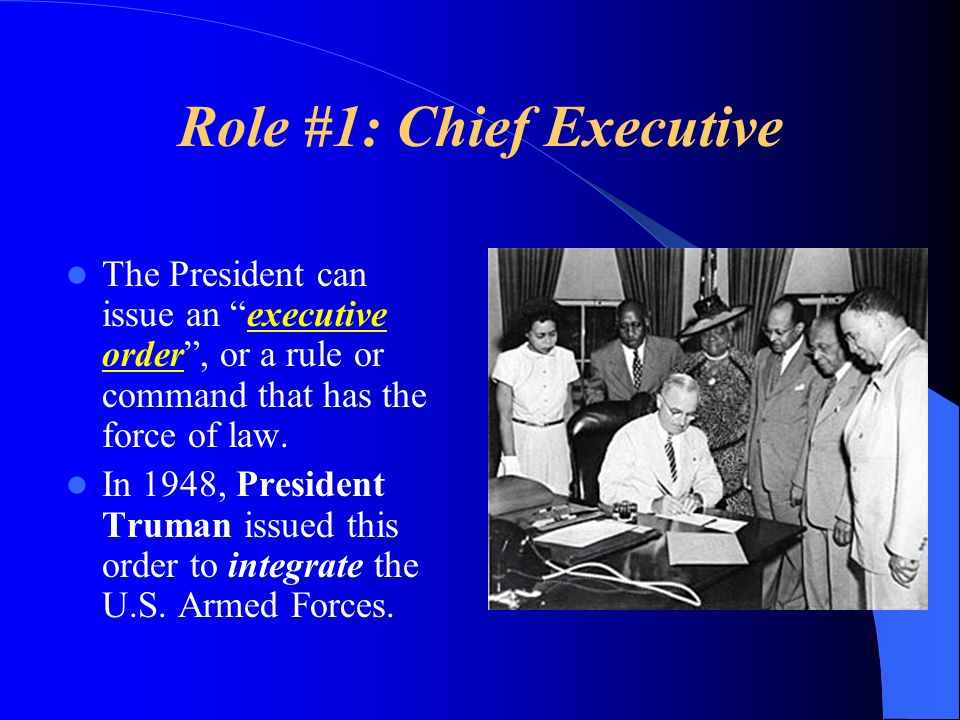 Role #1: Chief Executive