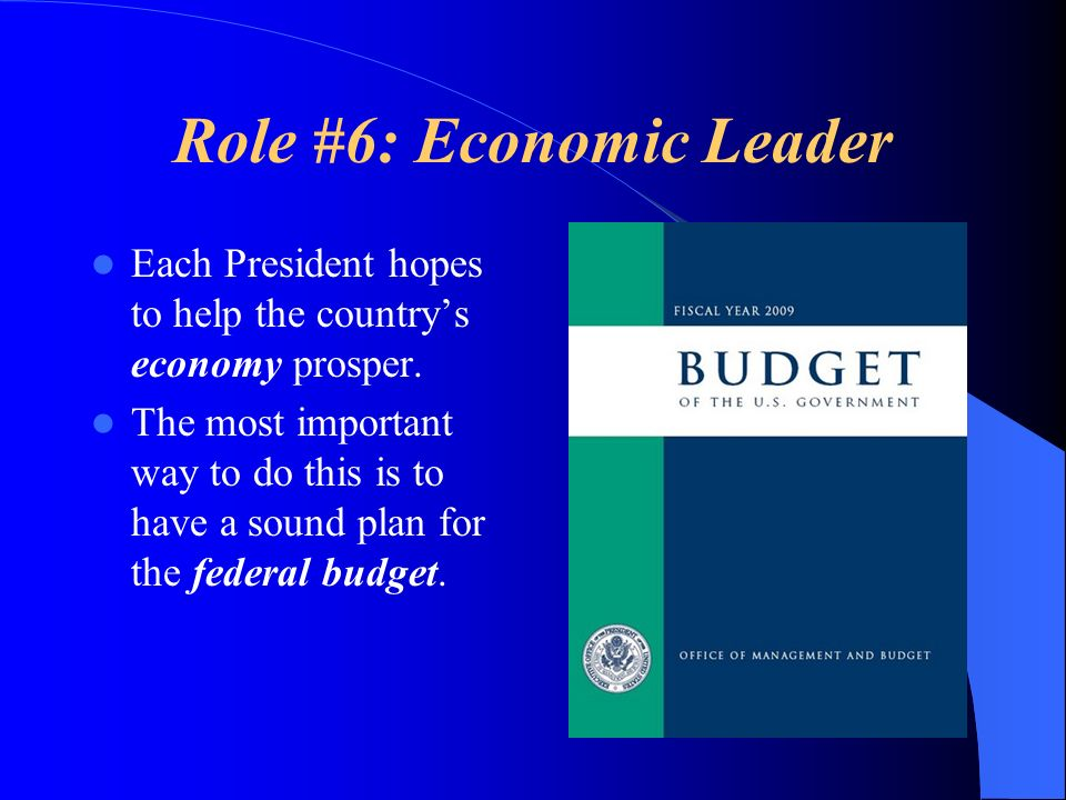 Role #6: Economic Leader