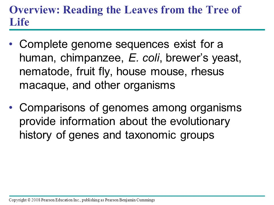 Overview: Reading the Leaves from the Tree of Life