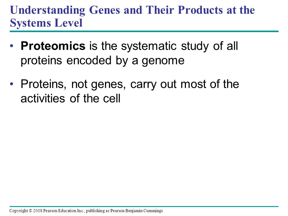 Understanding Genes and Their Products at the Systems Level