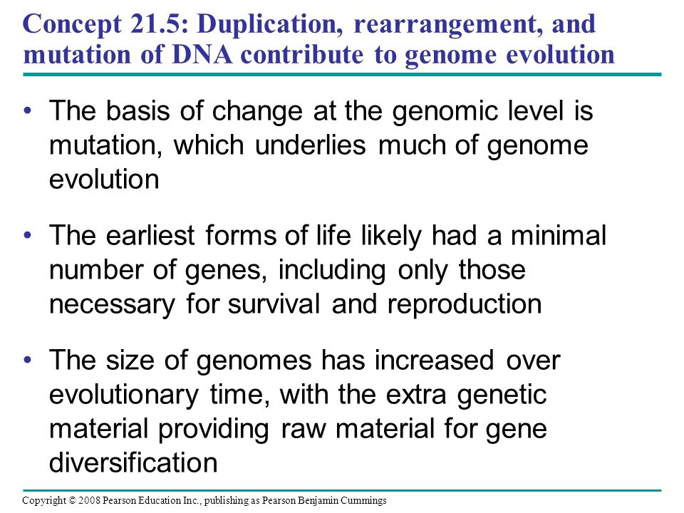 Concept 21.5: Duplication, rearrangement, and mutation of DNA contribute to genome evolution