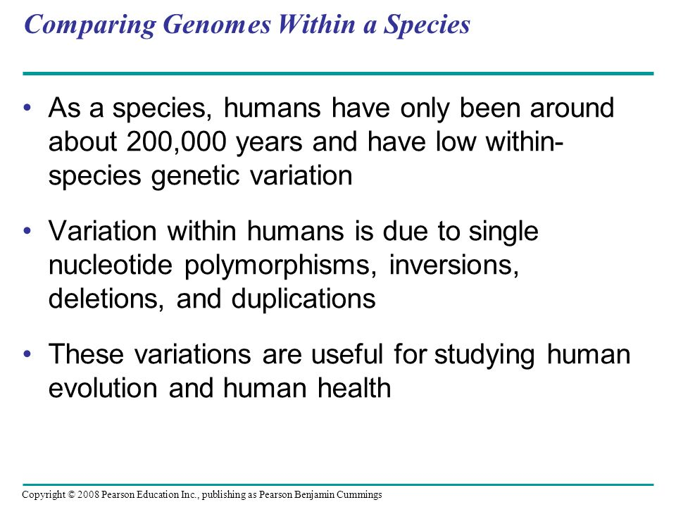 Comparing Genomes Within a Species