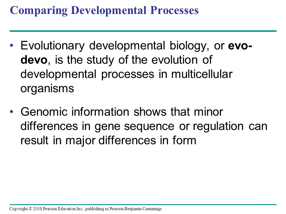 Comparing Developmental Processes